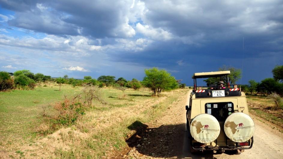 Tanzania Experience Serengeti Pirschfahrt
