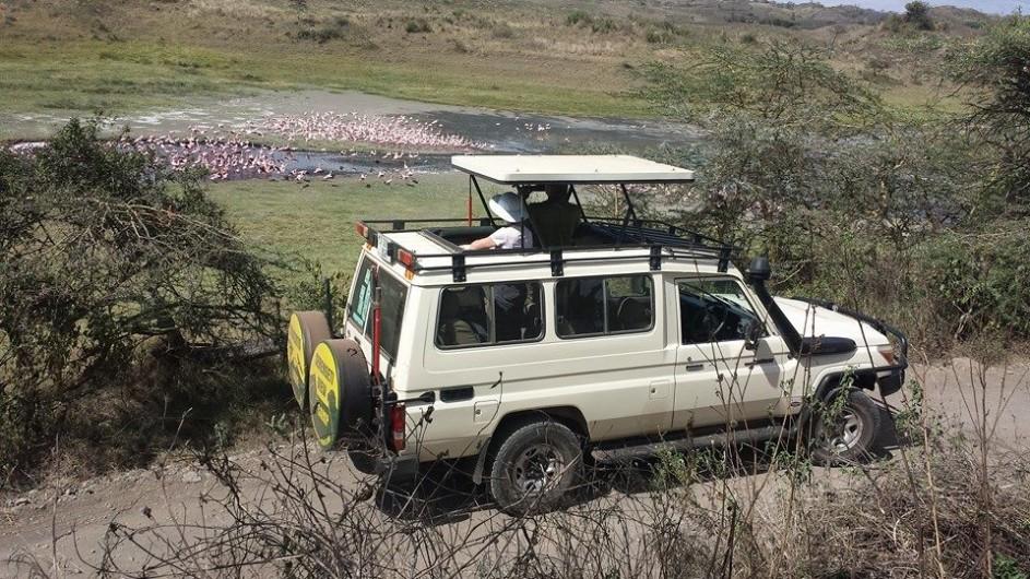 Tanzania Wilkinson Tours Safari Fahrzeug Arusha Nationalpark