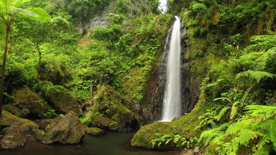 Vanuatu Tanna tropischer Wasserfall
