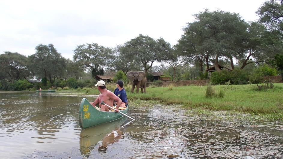 Zambia Lowe Zambezi Nationalpark Kanuausflug