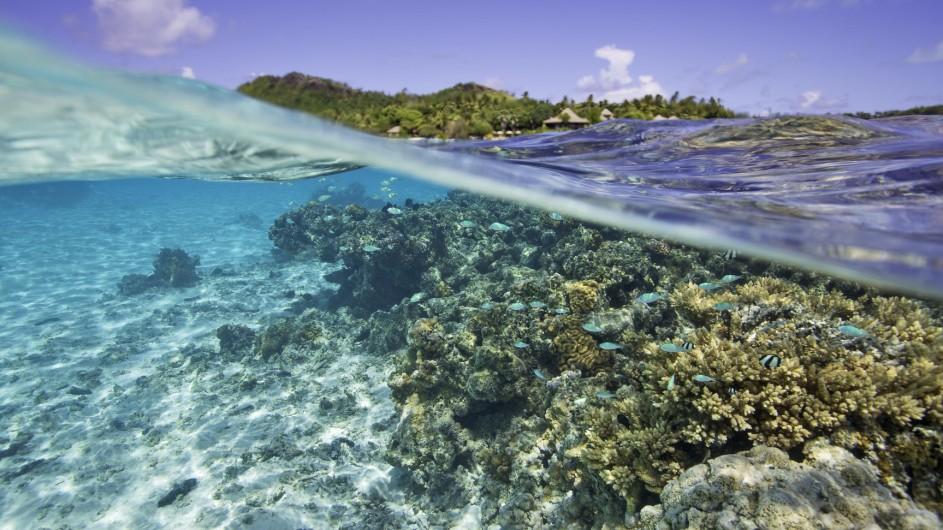 Cook Inseln Pacific Resort Aitutaki Unterwasser