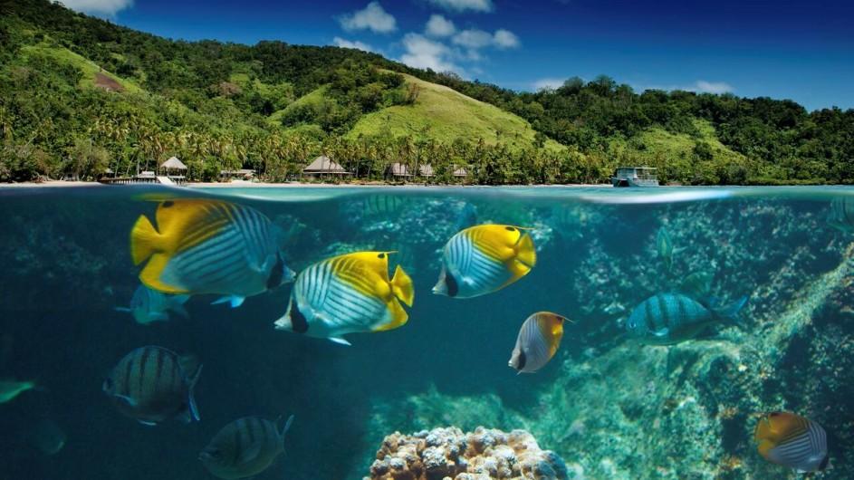 Fiji Inseln Lalita Island Resort Ansicht mit Unterwasserwelt