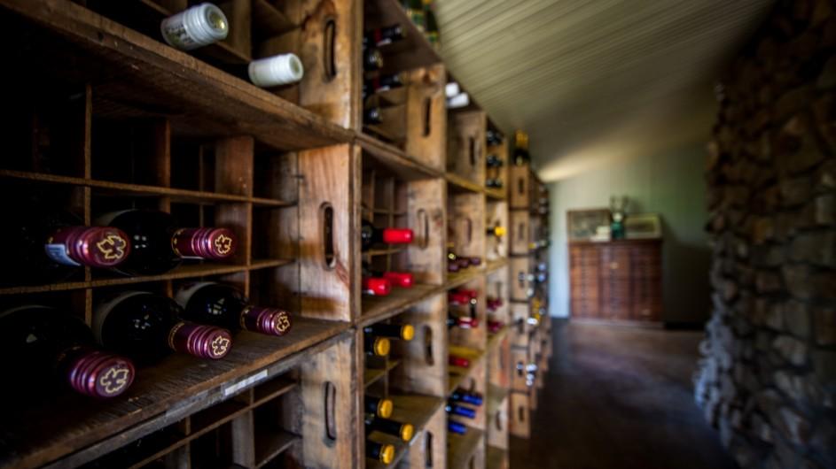 Südafrika Addo Nationalpark Camp Figtree Weinkeller