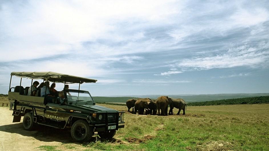 Südafrika Addo Nationalpark Woodall Country House Pirschfahrt mit Elefanten