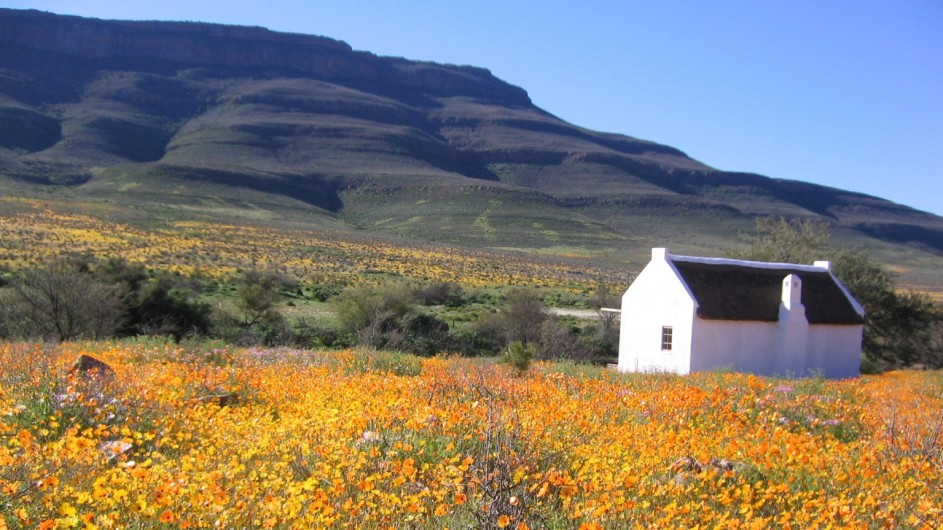 Südafrika Cederberge Enjo Nature Farm Chalet in Blumen