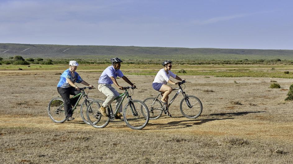 Südafrika De Hoop Collection Fahrradtour