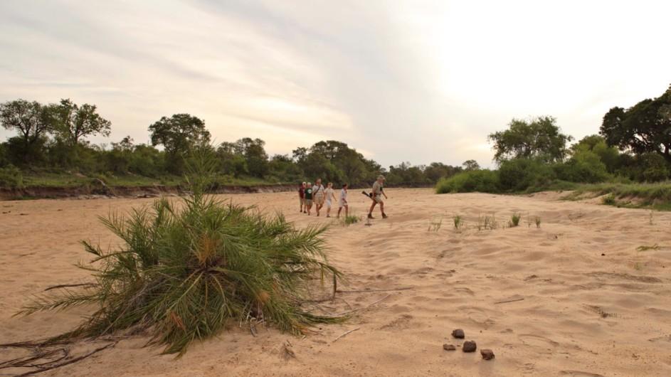 Südafrika Krüger Nationalpark Ngala Tented Camp Fußpirsch