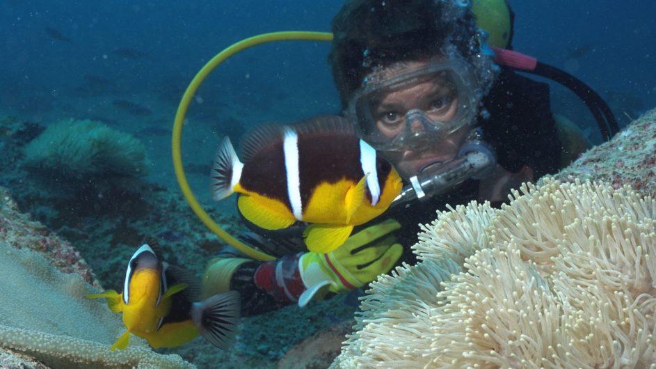 Seychellen - Praslin - New Emerald Cove - Tauchen