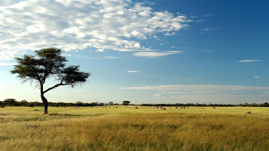 Namibia Frans Indongo Lodge Landschaft