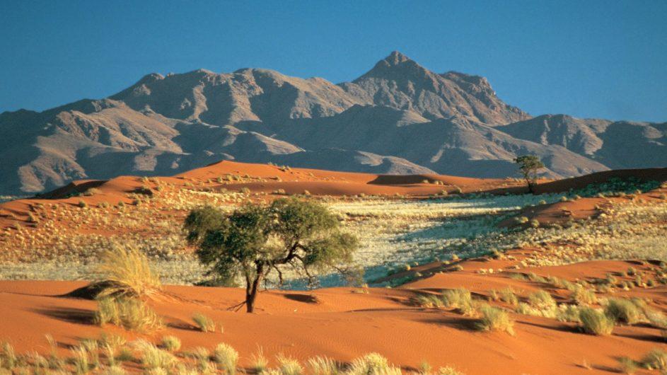Namibia - Wolwedans - Dunes Camp - Landschaft