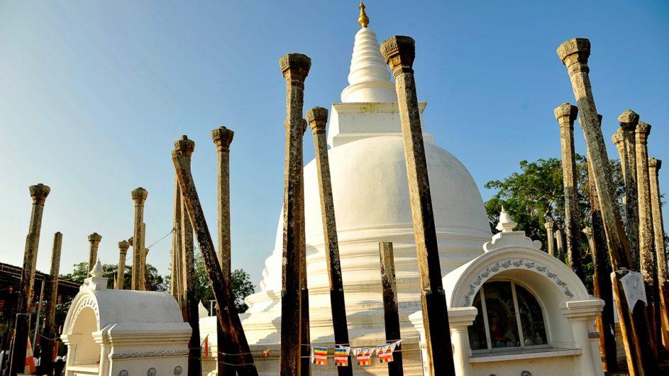 Sri Lanka Chamäleon Reisen Kleingruppenreise Kandy Anuradhapura