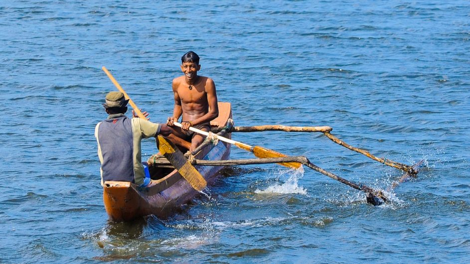 Sri Lanka Chamäleon Reisen Kleingruppenreise Kandy Fischer