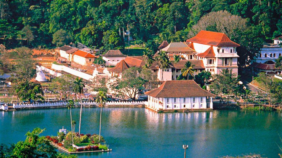 Sri Lanka Chamäleon Reisen Kleingruppenreise Jaffna oberer See Kandy