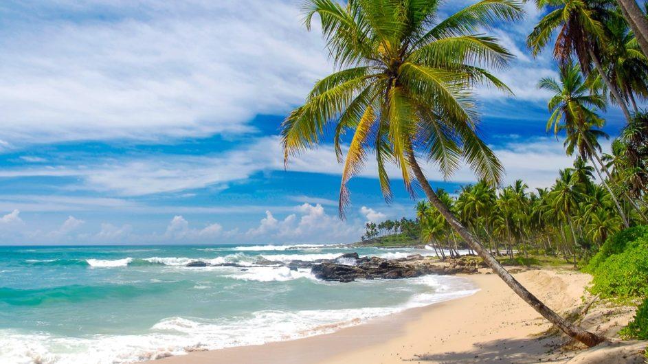Sri Lanka Chamäleon Reisen Kleingruppenreise Jaffna Strand