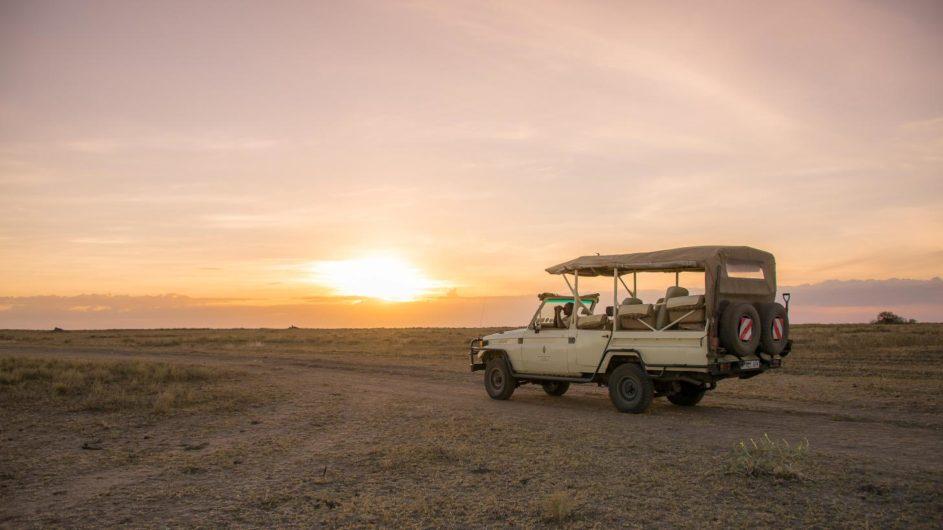 Tanzania Serengeti Sanctuary Kusini Pirschfahrt
