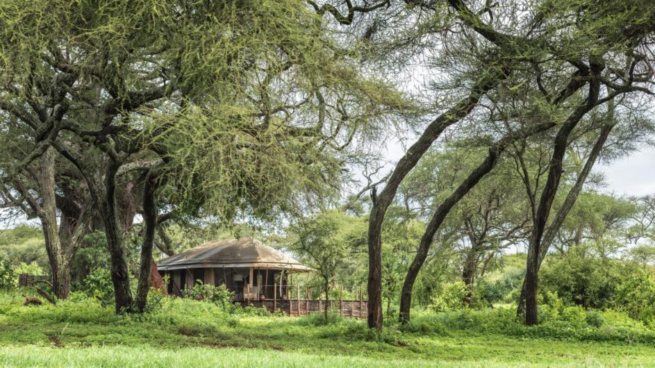 Tanzania Tarangire Nationalpark Sanctuary Swala Camp Zimmer Ansicht