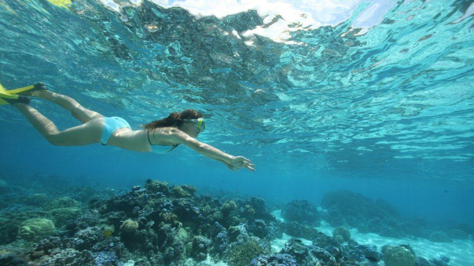 Französisch Polynesien Moorea Sofitel Ia Ora Beach Resort Schnorcheln